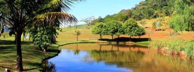Frangipani Lago