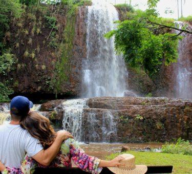 Frangipani Cachoeira