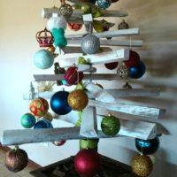 Natal Frangipani